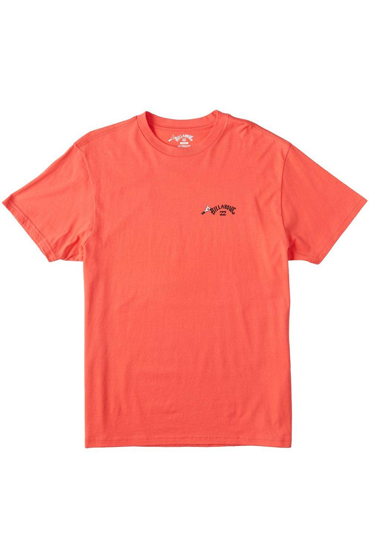 Billabong T-Shirt TRUFFULA FADE DR SEUSS Cayenne