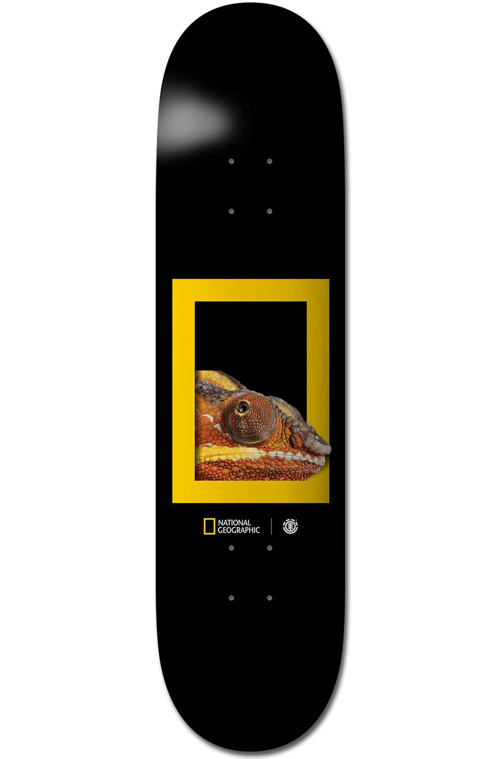 "Element Skate Board 8.25"" DRAGON NATIONAL GEOGRAPHIC Assorted"