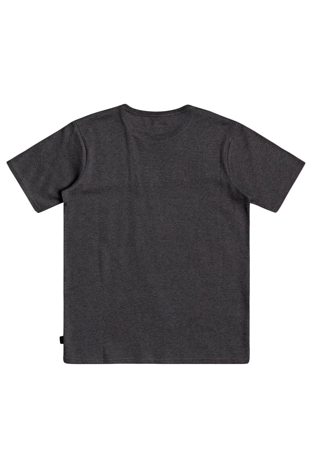 T-Shirt Quiksilver TROPICALSLANGSS B TEES Charcoal Heather